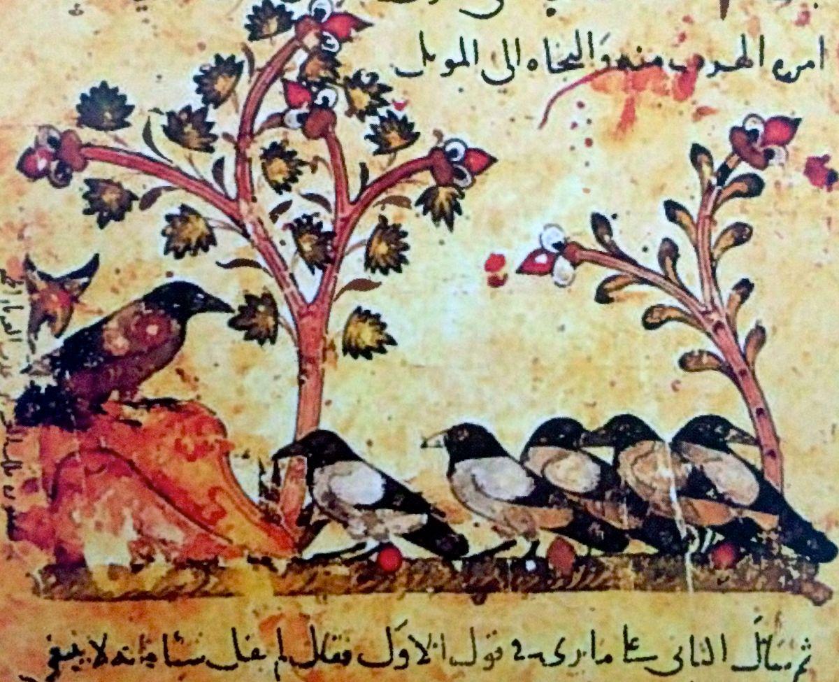 La lingua degli uccelli e il Sufismo
